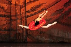 Cristina Terentiev in <i>Don Quixote</i>